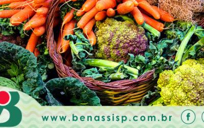30% das causas de câncer podem ser evitadas com uma alimentação saudável e equilibrada